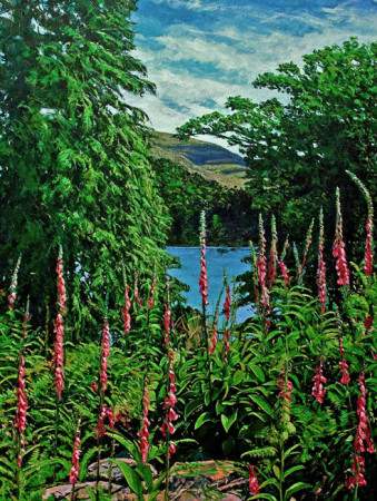 Durrus painting by Nigel Overton