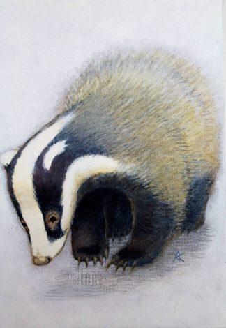 Badger Acrylic on Canvas