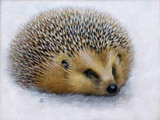 Hedgehog Acrylic on Canvas